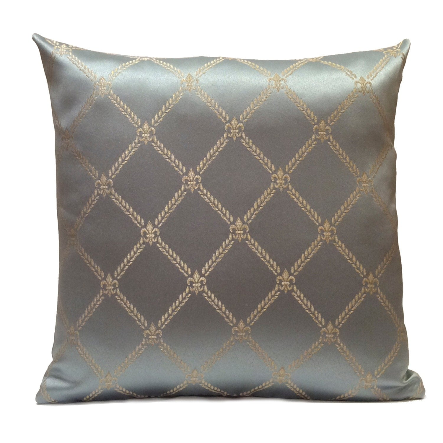 Baby Blue And Brown Throw Pillows : Baby Blue Pillow Throw Pillow Cover Decorative Pillow Cover