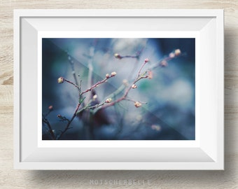 Frühling - Fine Art Print, Photography, Photo Print, Nature Photo, Flower Photo Print - Different sizes avariable!