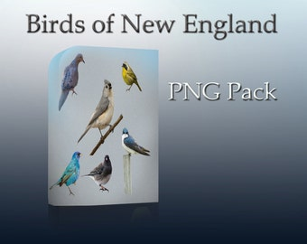 Birds - Png cutouts - Photoshop overlays - Birds of New England PNG Pack