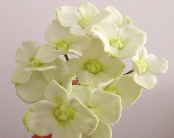 Sugar flower Hydrangeas