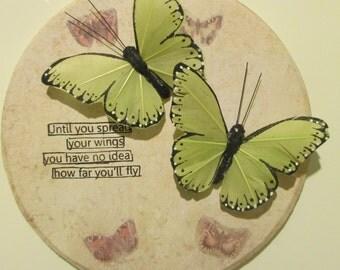 Butterflies decor