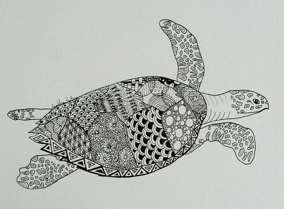 Line Drawing Turtle : Turtle line drawing original or print art pen ink black
