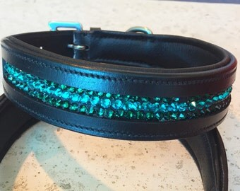 "Leather Padded Dog Collar ""Rainforest"""