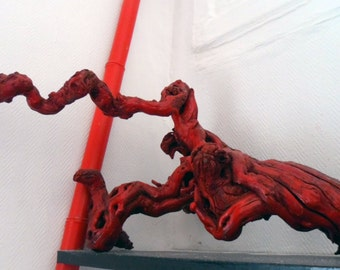 Sculpture wood, strain of Red Vines, Wood carving, vine stock, redwood