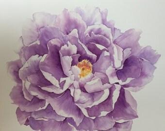 Purple Peony Giclee