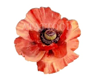 Poppy flower Temporary Tattoo