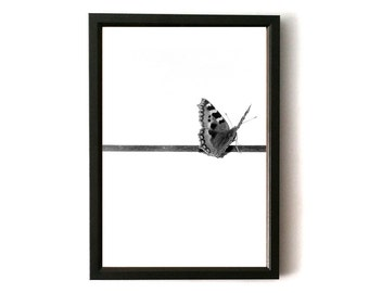 Butterfly, Photography, Art , Modern, Art print, Wall Art, Decor, Contemporary, Creatures, Nature, Black and White, Gift, Picture