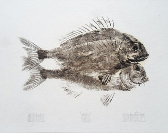 Bream, Gyotaku print - traditional Japanese fish art