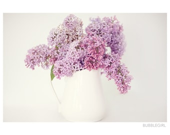 Nature Photography PRINT, Lilacs - 1, Wall Art