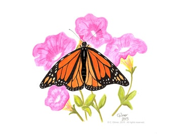 Monarch on Pink - Limited Edition Print
