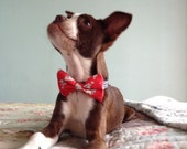 Dog Bowtie,Bow tie for dogs,Vintage dog bowtie,, Red dog bow tie Dr. Seuss Bow tie