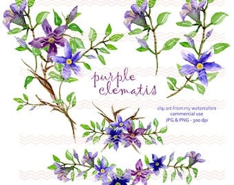 Digital Watercolor Purple Clematis Bouquets (5) Graphic Clip Art 300 dpi in JPG and PNG Commercial Use