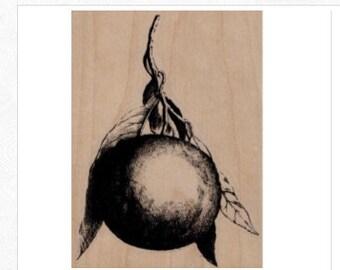 Rubber stamp   orange fruit  illustration  number 19667  summer garden