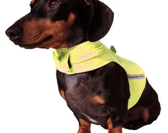 Eco Dog Harness - Re-enforced Yellow Canvas Cotton - Medium