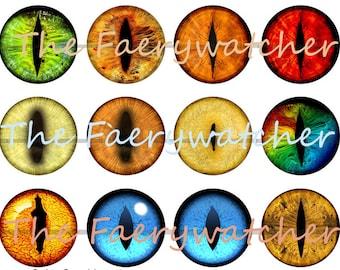 Creature Eye Magnets, Creature Eye Pins, Creature Eye Flatbacks, Dragon Eye Magnets, Dragon Eye Pins, Dragon Eye Flatbacks, Eye Badges