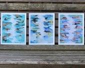 Ocean Print Collection