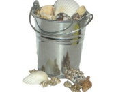 "Seashells & Pail - Made to Fit American Girl / 18"" Doll - DOLL ACCESSORIES - Real Shells!"