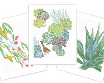 "Eucalyptus, Succulents and Agave: Set of Three 8"" x 10"" Art Prints"