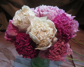 Dried Whole Peony Blossoms with Stems, Organic, Naturally Dried, for Crafts, Decorating, Wreaths, Tea
