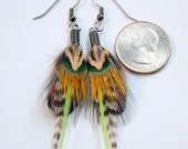 Deep Forest Pheasant Feather Earrings- Ready to Ship