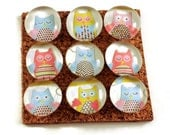 Funky Push Pins  Decorative Push Pins Thumb Tacks Cork Board Pins in Owl Babies (P35)