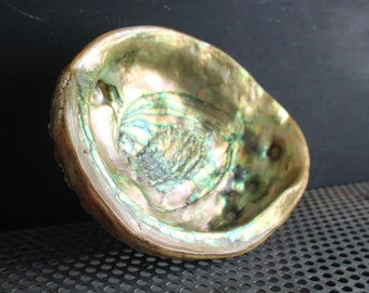 Vintage Abalone Shell, Natural Nautical Beach Decor, Rustic Footed Ashtray Specimen