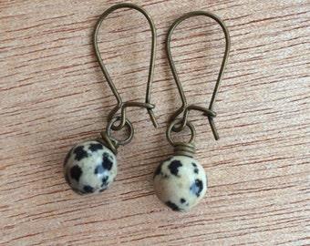 E589 Dalmatian Jasper Earrings