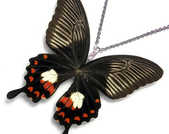 Real Butterfly Wing Necklace / Pendant (WHOLE Papilio Polytes Butterfly - W127)