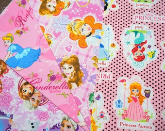 Disney Cartoon  Disney Princess  Anna and Elsa Fabric Scrap   2015Ab