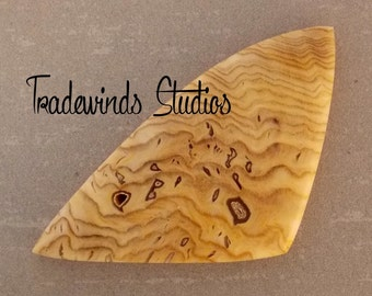Hell's Canyon Petrified Sequoia Freeform Cabochon