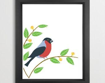 Bullfinch Bird Art  - Fine Art prints black color wall art decor birds