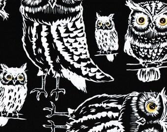 Black Night Owls Fall Autumn Halloween Owl Bird Woodland Print Cotton Fabric 1 yd