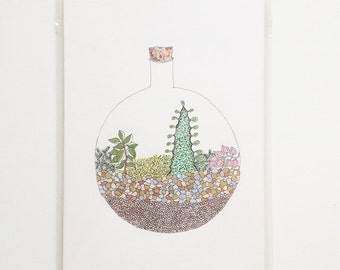 Terrarium Mixed Plants Drawing - Ceropegia Woodii and Ceraria Namaquensis