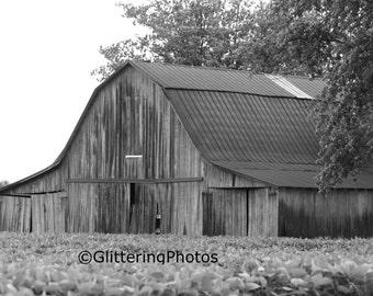 Weathered, Barn, Eminence, Indiana, Morgan County, Fine Art, Photography, Print, Glossy 8 x 10, No 4