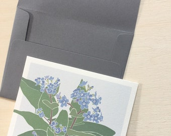 Forget-me-not 5 Card Pack