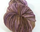 CLEARANCE -  Jest 3ply Merino/Nylon Sport - Twig and Berries
