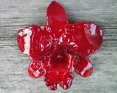 REAL Natural Bold Rich Marsala Red ORCHID Pin and Pendant