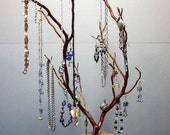 Jewelry Tree - Large Manzanita - 1293