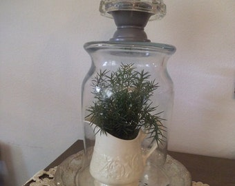 Large upcycled CLOCHE Dome with Crystal and Gray knob and silverplate Tray... Cottage chic Terrarium or display