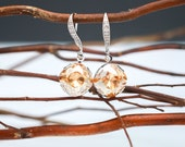 Bridesmaid Jewelry Crystal Golden Shadow Earrings in Silver