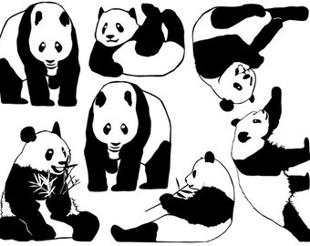Panda Bear Ceramic Decals, Glass Decals or Enamel Decals