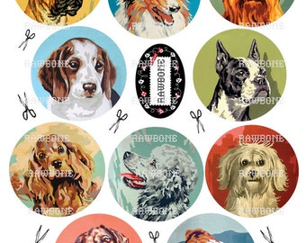 Digital Download Vintage Paint By Number Dogs - pbn dogs - collie, boxer, beagle, poodle, springer, Boston,bull, dachsund, yorkie, llasa