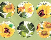 Stickers, Summer Flowers, Sunflower Stickers, Daisy, Floral Stickers