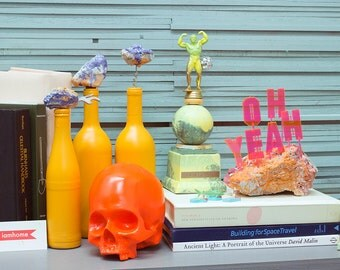 OH YEAH signs, Shark Attack magnets, fluorescent skulls, barware and trophies you DESERVE!