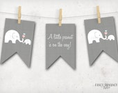 Elephant Baby Shower Bunting Banner /Little Peanut Banner Pink and blue / Instant Download / PRINTABLE /  #10205