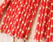 DAISY RED Summer Flowers paper straws