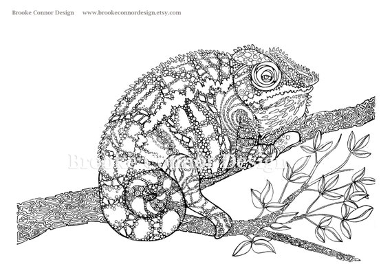 Chameleon Coloring Page SUPER DETAILED