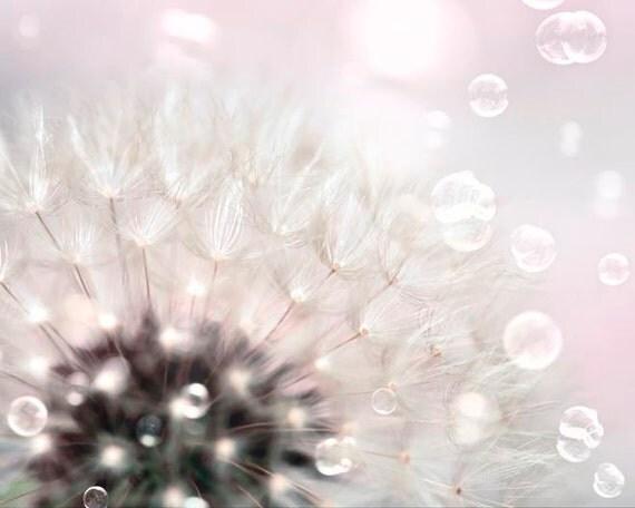 Flower Photography, Pink, White, Dandelion Print, Girl Nursery Decor, Pastel Decor, Dandelion Art Print