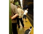 NYC Subway Cat Greeting Card, Blank Note Cards, New York Subway, Whimsical Art, Cat Artwork, Illustration Art, Deborah Julian