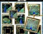1 inch Square Digital Collage & 1.5 inch, Scrabble Tile Size Wedding Pendants Jewelry Multi Size, Peacocks Peacock Feathers Glitter Digital